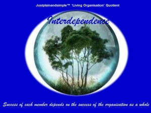 Living Organisation 1
